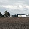 4B Farms, Inc.