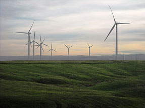 Part of Madison Farms' wind energy project.
