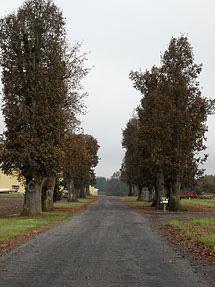 View down the driveway to the Oak Lane Farms shops